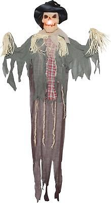 LIFE SIZE 6 FT LIGHTED Hanging Scarecrow OUTDOOR HALLOWEEN PROP HAUNTED SPIRIT](Hang Outdoor Halloween Lights)