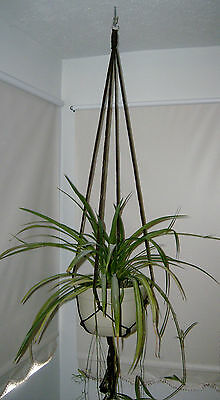 New Plant Hanger 60 inches ( 5 feet ) Brown 6mm Macrame cord Handmade