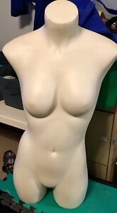 bust form   or dress form (female clothing sewing)