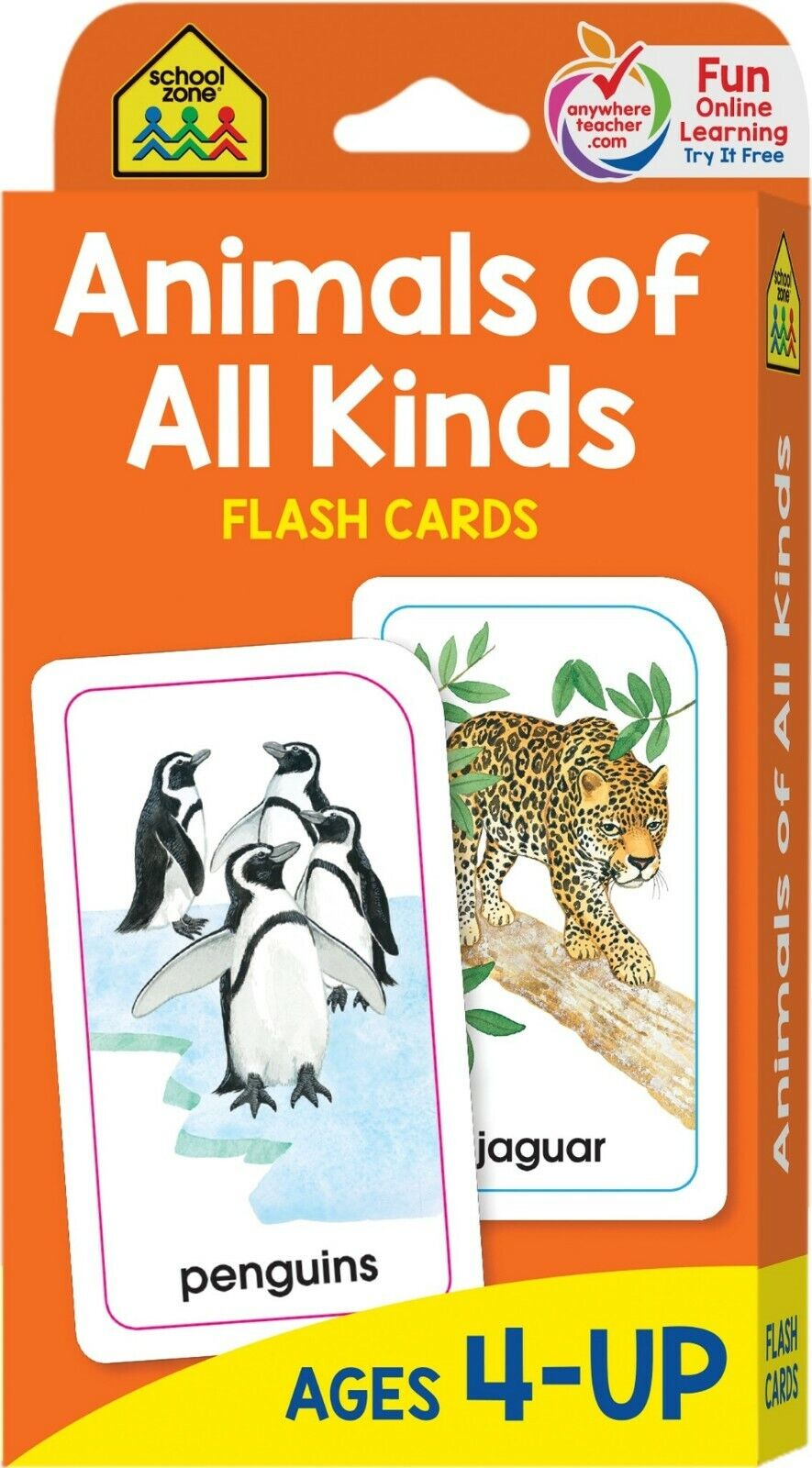 Preschool Learning Words Flash Cards Pictures Animal Vocabul