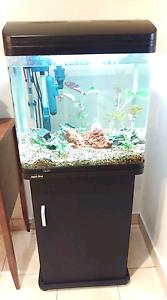 75 Litre Fish Aquarium AR510 Aqua One (Black) Macquarie Park Ryde Area Preview