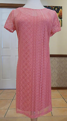 Kleid Stretch Lace Top (Socialite - Stretch Lace Dress or Long Top - BNWT - Size AU 10-14 - Pink)