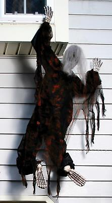 5 FT LIFESIZE Climbing Dead Zombie OUTDOOR HALLOWEEN DECOR PROP YARD HAUNT HOUSE