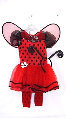 Halloween Costumes For 4 Girls (Goodmark Beatiful Bug Costumes for Girls Small 4-6)