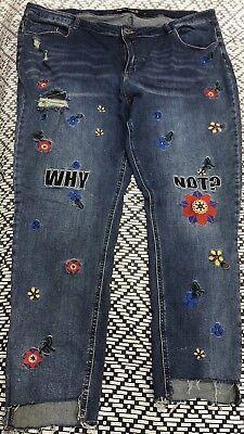 Designer Ladies Plus Size Jeans size 24 EUC