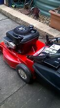 Rover Self propelled lawn mower Petrie Pine Rivers Area Preview