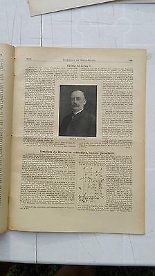1919 21 Ludwig Schwering aus Hannover