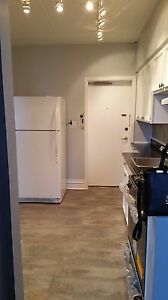 Historical Apartment for Rent in Downtown Galt Cambridge Kitchener Area image 5
