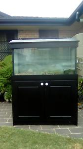 Big fish tank good condition Cabramatta West Fairfield Area Preview