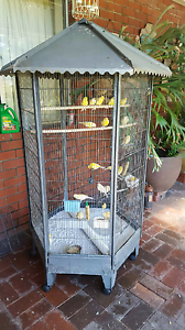 Canaries plus cage South Guildford Swan Area Preview