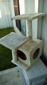 Cat scratching retreat $25 o.n.o. Cessnock Cessnock Area Preview