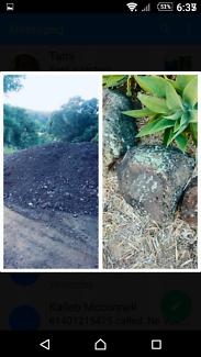 Mushroom   soil /bush rocks