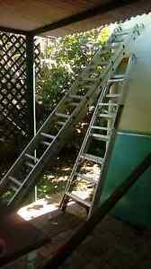 Gorilla  ladder Coopers Plains Brisbane South West Preview