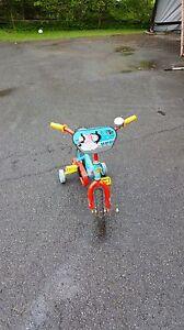 Thomas Train Boy's Bicycle