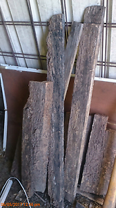 Tree branches for give away Glendenning Blacktown Area Preview