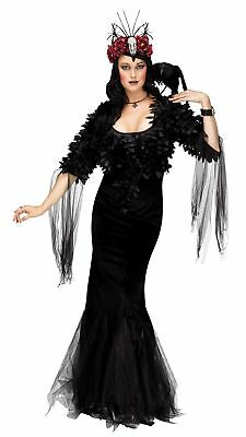 Sexy Raven Mistress Costume Womens Halloween Black Witch  Sorceress Fancy Dress](Black Raven Halloween Costume)