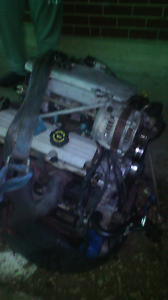 Vt Vx commodore 97,98,99 body, interior, engine and trans. Ingle Farm Salisbury Area Preview