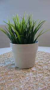 Artificial green plant in pot - small Cleveland Redland Area Preview