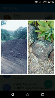 Rocks / mushroom soil