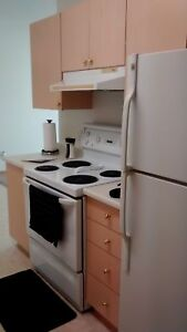 Clean Ground Floor 2 Bedroom Apartment New Carpet Great Building