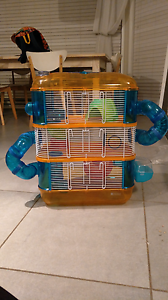 3 level mouse cage Thornton Maitland Area Preview