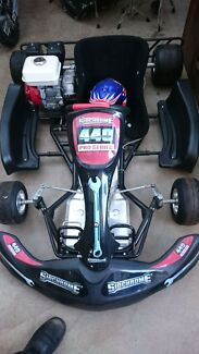 Brand new go kart unwanted prize great to have  New Norfolk Derwent Valley Preview