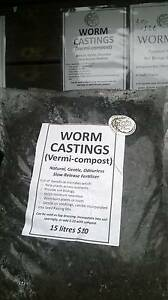 Worm Castings (vermicompost) Longley Kingborough Area Preview