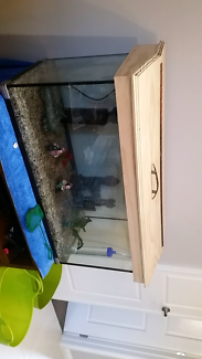 3ft tank with Everything