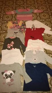 Baby Girl Long Sleeve T-shirts (size 1)