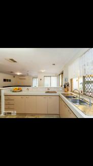 Perfect single room $90/week Belmont Forum