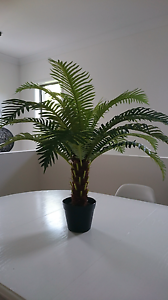 Artificial/fake plant Green  70cm tall Cleveland Redland Area Preview