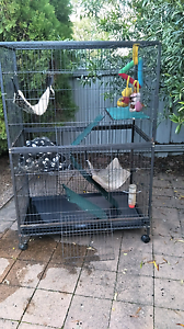 Ferret Cage Rutherford Maitland Area Preview