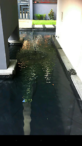 Handyman services -landscaping -koi pond - tree lopping- Perth Perth City Area Preview