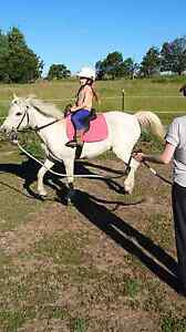 REVISED LISTING: Super quiet lead-line pony mare Blayney Blayney Area Preview