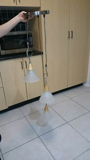 Free light fitting  Harrington Park Camden Area Preview