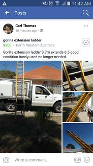 Gorilla extension ladder 3.7m