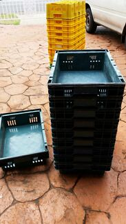 Heavy duty rectangular plastic trays  - $2 each! Hunterview Singleton Area Preview