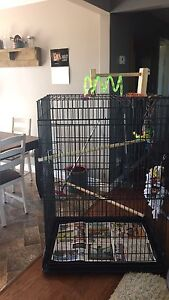 Collapsible parrot cage