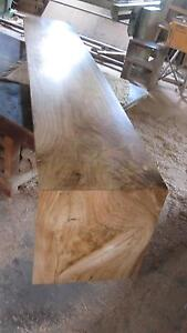 timber slabs, Snow gum furniture hardwood Yandina Maroochydore Area Preview