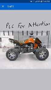 Looking for a 250cc quad bike frame Telarah Maitland Area Preview