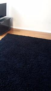 Beautiful black shaggy rug Coogee Eastern Suburbs Preview