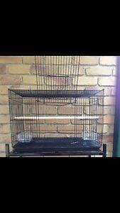BRAND NEW $45each flight cage 60cm x 40cm x 40cm Helensvale Gold Coast North Preview