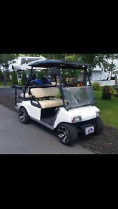 Voiturette de golf 2010 kart de golf