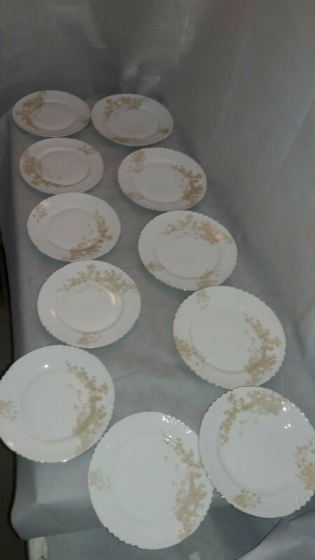 Victoria Carlsbad Austria, 11 Pieces, Plates, Floral Pattern with Gold Trim