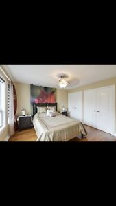 Room Available For Rent Near Square One Hurontario/Eglinton