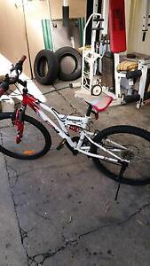 "22 "" Mountain boy bike Marrickville Marrickville Area Preview"