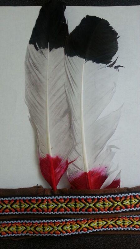 Couple Native American Costume