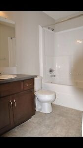 2 Bed 2 Bathroom with Weber bbq + free gas.....(silver berry)