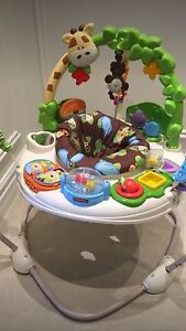 Baby's multi-colored Jumperoo