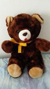 Teddy bear Aberglasslyn Maitland Area Preview
